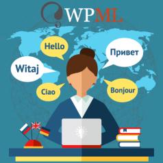 WP Rocket – Make WP Load Fast in a Few Clicks